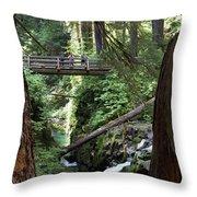 Bridge At Sol Duc Fall #1 Throw Pillow