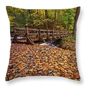 Bridge At Where The Waters Meet Throw Pillow