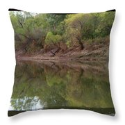 Bridge Frame Throw Pillow