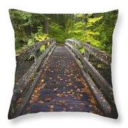 Bridge In A Park Throw Pillow