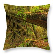 Bridge In The Rainforest Throw Pillow