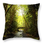 Bridge In The Rainforest Throw Pillow