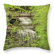 Bridge Over Little Clifty Falls Throw Pillow