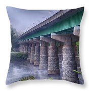 Bridge Over The Delaware River Throw Pillow