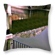 Bridge Over The Grand Throw Pillow
