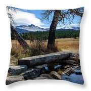 Bridge To Long's Peak Throw Pillow