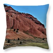 Bridger-teton National Forest Throw Pillow