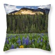 Bridger Teton National Forest Throw Pillow