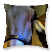 Bridled Throw Pillow