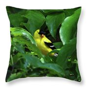 Bright American Goldfinch Throw Pillow