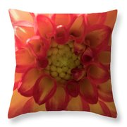 Red And Yellow Flower Bloom Throw Pillow
