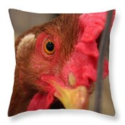 Bright And Colorful Chicken Who Are You Throw Pillow