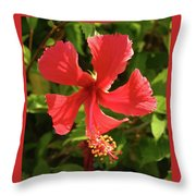 Bright And Sunny Throw Pillow