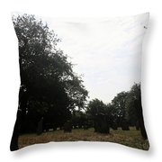 Bright And Sunny Day In The Cemetery Throw Pillow