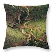 Bright Angel Trail Abstract Throw Pillow