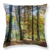 Bright Autumn Morning Throw Pillow
