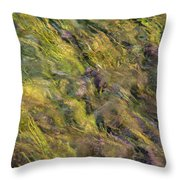 Bright Cheerful Waters Throw Pillow