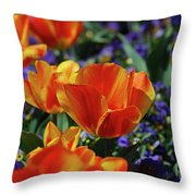 Bright Colored Garden With Striped Tulips In Bloom Throw Pillow