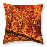 Bright Colorful Autumn Tree Leaves Art Prints Baslee Troutman Throw Pillow