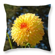 Bright Colorful Dahlia Flower Art Prints Baslee Troutman Throw Pillow