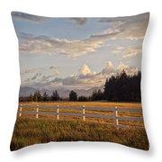 Bright Evening Light Throw Pillow