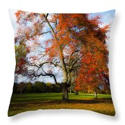 Bright Fall Colors Throw Pillow