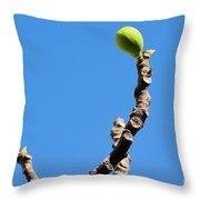 Bright Fig Against The Sky. Throw Pillow