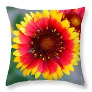 Bright Floral Day Throw Pillow