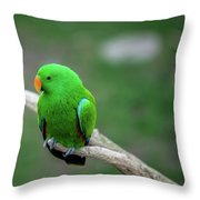 Bright Green Parrot Throw Pillow