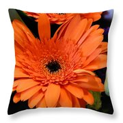 Bright Orange Daisy Throw Pillow