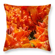 Bright Orange Rhodies Art Prints Canvas Rhododendons Baslee Troutman Throw Pillow