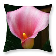 Bright Pink Calla Throw Pillow
