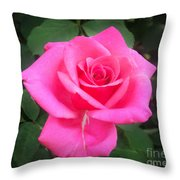 Bright-pink Rose 049 Throw Pillow