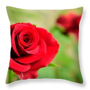 Bright Red Rose Throw Pillow