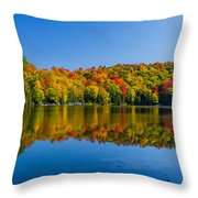 Bright Reflection Throw Pillow