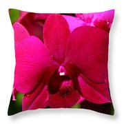 Bright Scarlet Red Orchid Throw Pillow