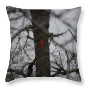 bRIGHT SPOT ON A CLOUDY DAY Throw Pillow