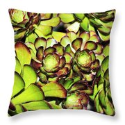 Bright Succulents Throw Pillow
