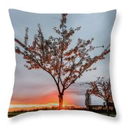 Bright Sun With Long Red Rays Shines Near The Trunk Throw Pillow