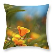 Bright Sunny Day Throw Pillow