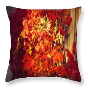 Bright Sunny Red Autumn Plants Throw Pillow