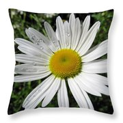 Bright White Flower With Water Droplets Throw Pillow