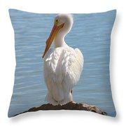 Bright White Pelican Throw Pillow