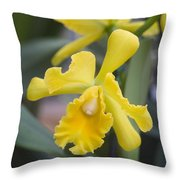 Bright Yellow Cattleya Orchid Throw Pillow by Allan Seiden - Printscapes
