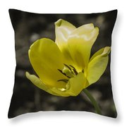 Bright Yellow Tulip Squared Throw Pillow