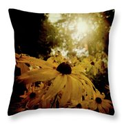 Brighten Up Throw Pillow