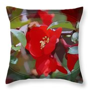 Brighter Than Spring Throw Pillow