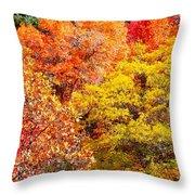 Brillant Fall Throw Pillow