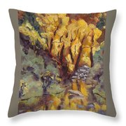 Brilliance At Service Creek Steamboat Springs Colorado Throw Pillow