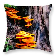 Brilliant Orange Throw Pillow